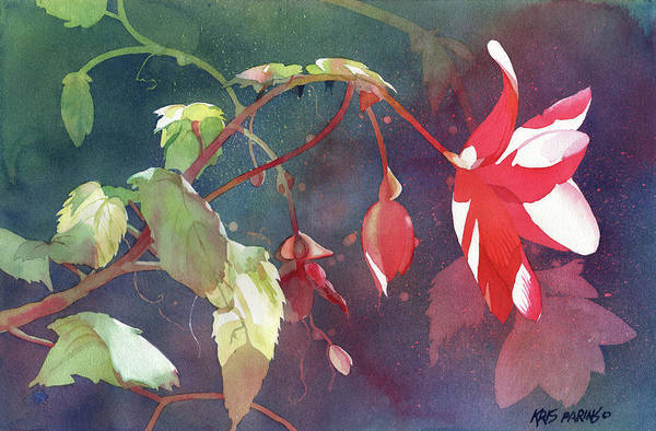 Reach Painting - Ruby Begonia by Kris Parins
