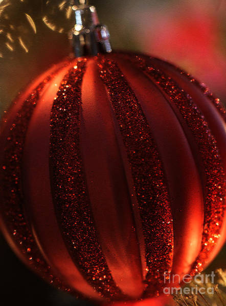Photograph - Ruby Red Christmas by Linda Shafer
