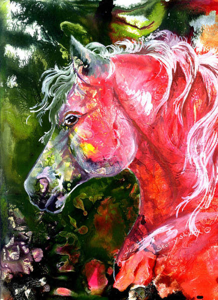 Painting - Ruby Stallion by Sherry Shipley