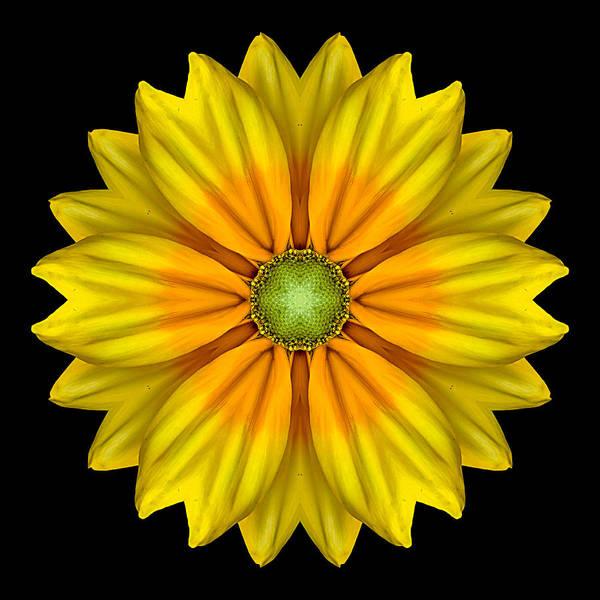 Photograph - Rudbeckia Prairie Sun I Flower Mandala by David J Bookbinder