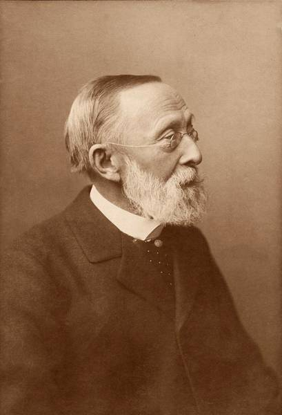 Human Head Photograph - Rudolf Virchow by American Philosophical Society