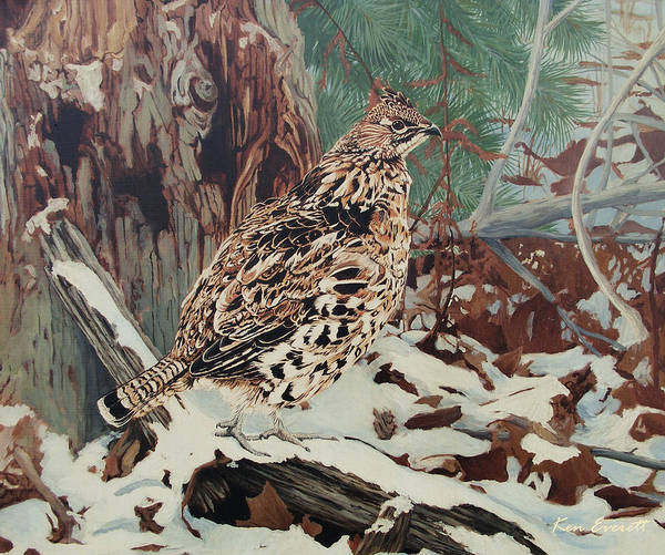Wall Art - Painting - Ruffed Grouse by Ken Everett