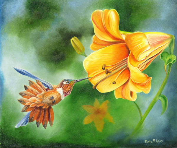 Wall Art - Painting - Rufous Hummer And The Lily by Phyllis Beiser