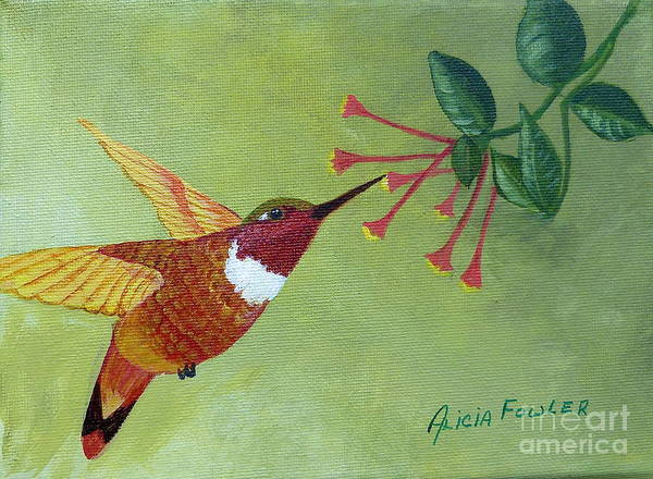 Painting - Rufous Hummingbird by Alicia Fowler