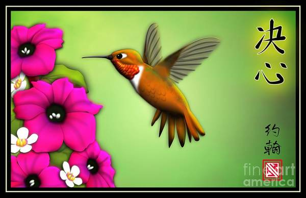 Bird In Flight Digital Art - Rufus Hummingbird by John Wills