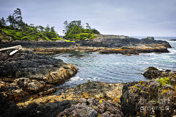West Vancouver Wall Art - Photograph - Rugged Coast Of Pacific Ocean On Vancouver Island by Elena Elisseeva