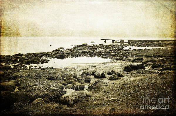Photograph - Rugged Coast by Randi Grace Nilsberg
