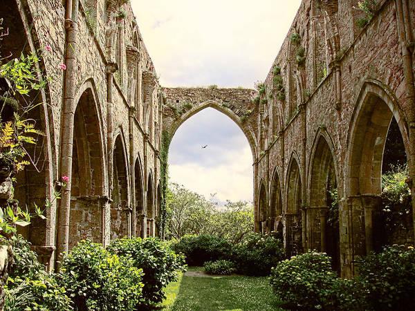 Photograph - Ruins Abbaye De Beauport Paimpol Bretagne by Menega Sabidussi