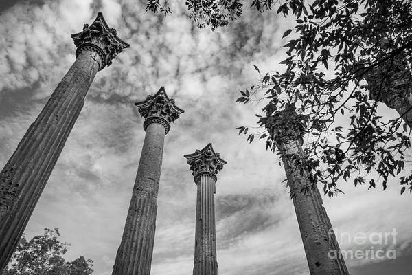 Photograph - Ruins Of Windsor In Southwest Mississippi by T Lowry Wilson