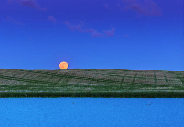 Strawberry Hills Wall Art - Photograph - Rull Moon Rising Over A Prairie Pond by Alan Dyer
