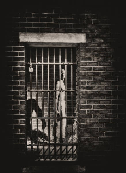 Photograph - Runaway Slave by Paul W Faust -  Impressions of Light