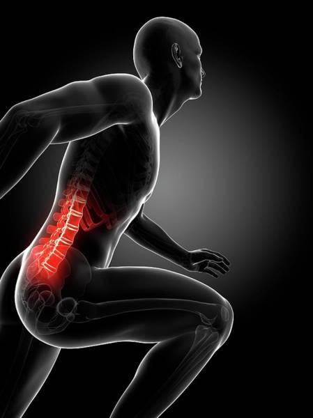Lumbar Vertebra Photograph - Runner's Lower Spine by Sebastian Kaulitzki