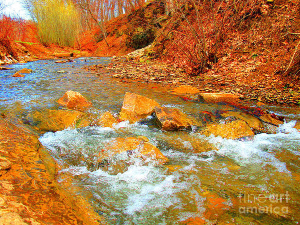 Photograph - Running Creek By Christopher Shellhammer by Christopher Shellhammer