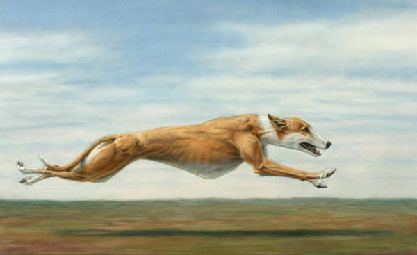 Plain Wall Art - Painting - Running Free by James W Johnson