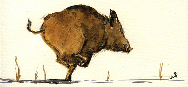 Pig Painting - Running Wild Boar by Juan  Bosco