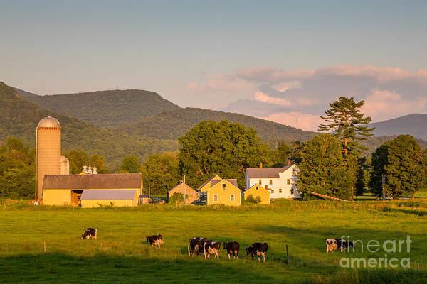 Photograph - Rupert Vermont Dairy Farm by Susan Cole Kelly
