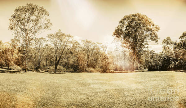 Photograph - Rural Australian Landscape by Jorgo Photography - Wall Art Gallery