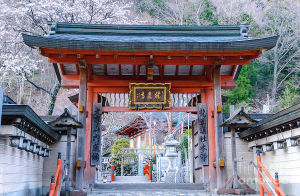 Photograph - Rural Japanese Temple Gate by David Hill