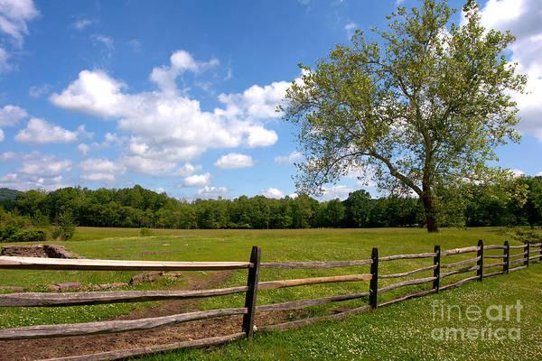 Fence Post Photograph - Rural Landscape by Olivier Le Queinec