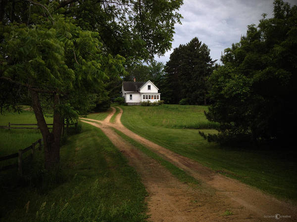 Photograph - Rural Neighbor by Tim Nyberg