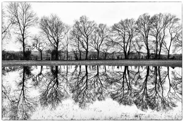 Wall Art - Photograph - Rural Reflections by Ron Plasencia