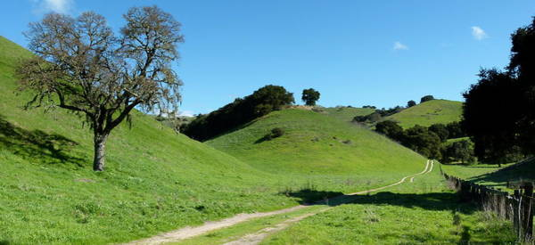 Photograph - Rural Rolling California Hills by Jeff Lowe
