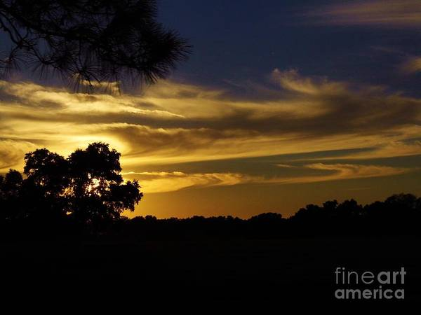 Photograph - Rural Silhouette Sunset by D Hackett