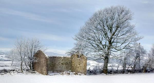 Photograph - Rural Winter by David Birchall