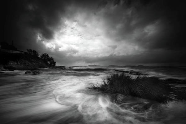 Long Beach Wall Art - Photograph - Rushes In The Sea by Santiago Pascual Buye