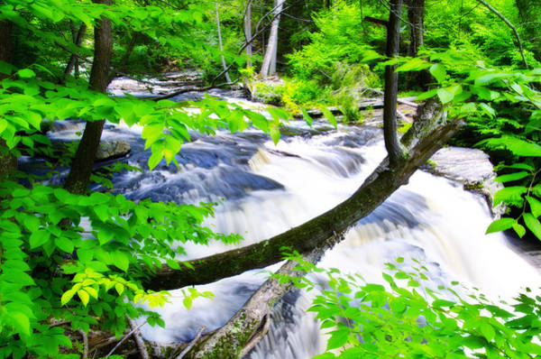 Pocono Mountains Wall Art - Photograph - Rushing Mountain Stream by Bill Cannon