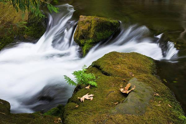Photograph - Rushing Water At Whatcom Falls Park by Priya Ghose