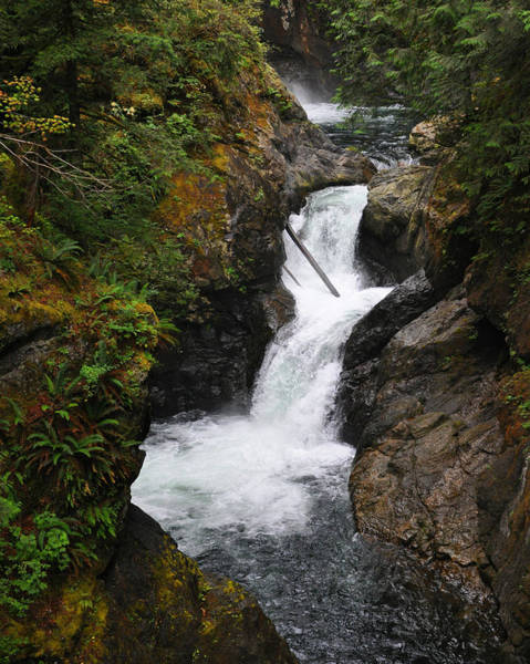 Photograph - Rushing Water by Kirt Tisdale