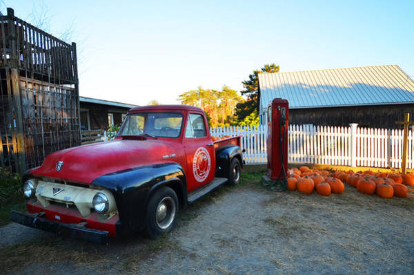 Photograph - Russel Farms 1951 Ford F100 by Toby McGuire