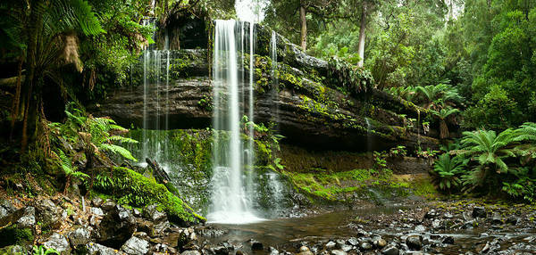 Photograph - Russell Falls Mount Field National Park Central Tasmania  by U Schade