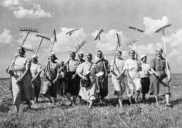 Photograph - Russia: Farmers, C1941 by Granger