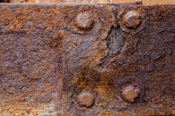 Photograph - Rust 1 by Fran Riley
