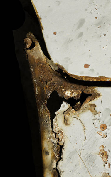Photograph - Rust Point by Fran Riley