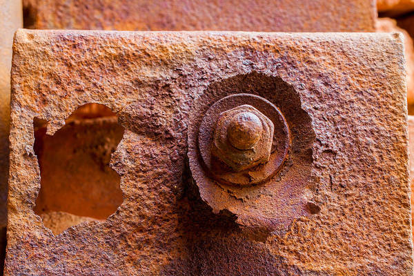 Photograph - Rust Ruffles In Color by Fran Riley