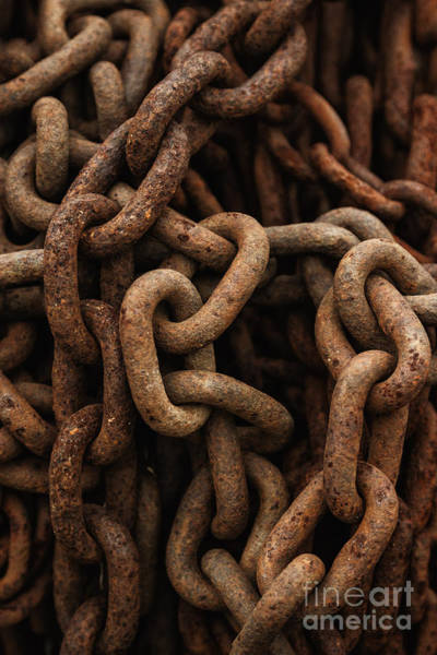 Chain Link Photograph - Rusted Chain by Margie Hurwich