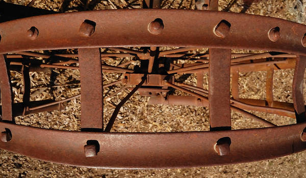 Photograph - Rusted Deception by Steven Milner