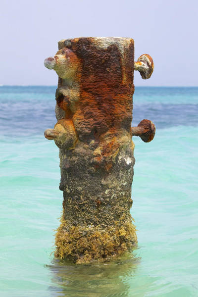 Photograph - Rusted Iron Fishing Pier by David Letts