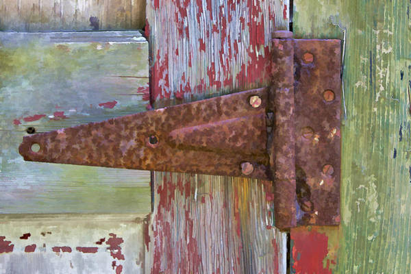 Photograph - Rusted Metal Hinge On A Colorful Door II by David Letts