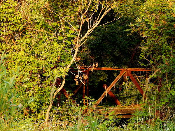 Photograph - Bridge To Nowhere by Wild Thing