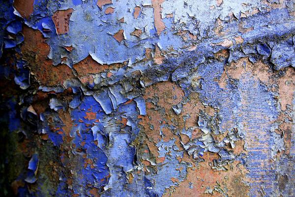 Ivanhoe Photograph - Blue Rust by Todd Sarah Ivanhoe