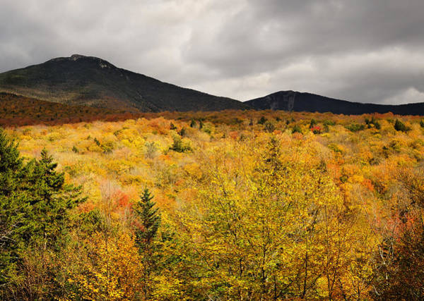 Photograph - Rustic Autumn At Franconia Notch by Luke Moore