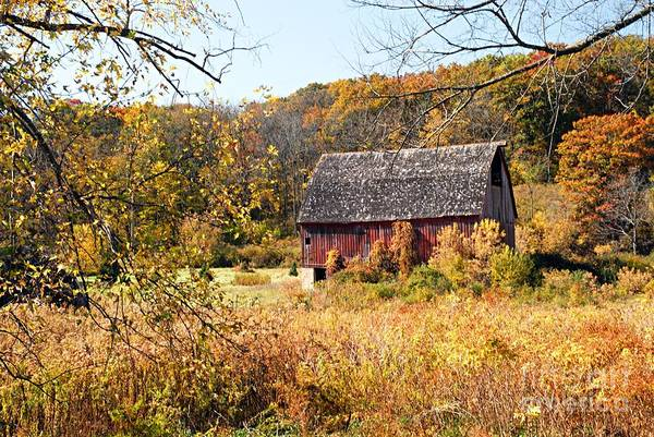 Photograph - Rustic Barn In Autumn by Larry Ricker
