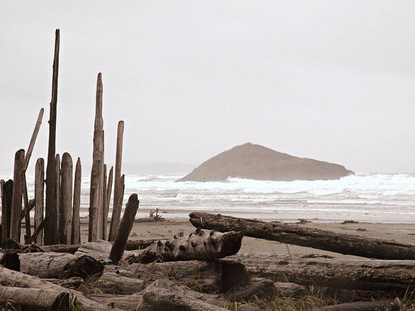 Photograph - Rustic Formation by Micki Findlay