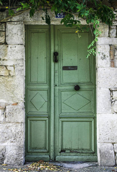 Photograph - Rustic Green Door With Vines by Georgia Fowler