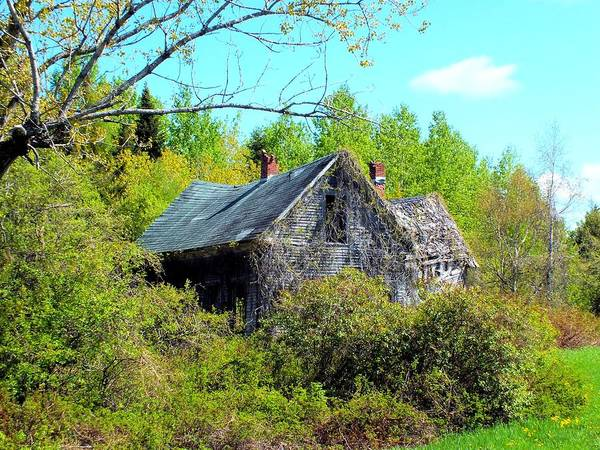 Aroostook Photograph - Rustic History by Gene Cyr