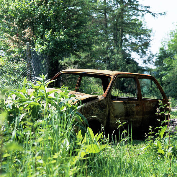 Oxidised Photograph - Rusting Car by Sheila Terry/science Photo Library